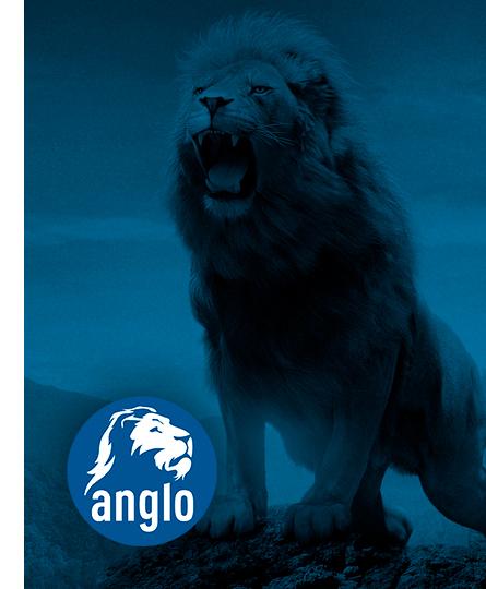 Sistema Anglo de Ensino